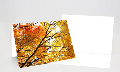 Make this cardThis card features a full bleed photo on the front and optional text spaces on both faces of the inside of the card, as well as an optional single line of text space on the back.Minimum photo resolution: 2000x1460